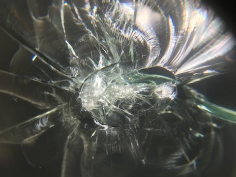 パッソ フロントガラス 飛び石 修理 ウインドリペア
