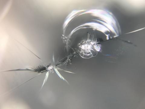 アルファード フロントガラス 飛び石 修理 ウインドリペア