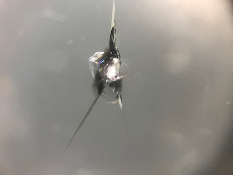ランサー レボリューション フロントガラス 飛び石 修理 ウインドリペア